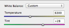 The white balance tool in Photoshop CS 6